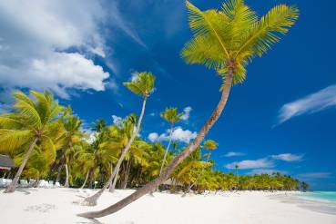 puerto plata single parents Playa senator hotels in puerto plata: book your holiday in the dominican republic at the best price on the official website.